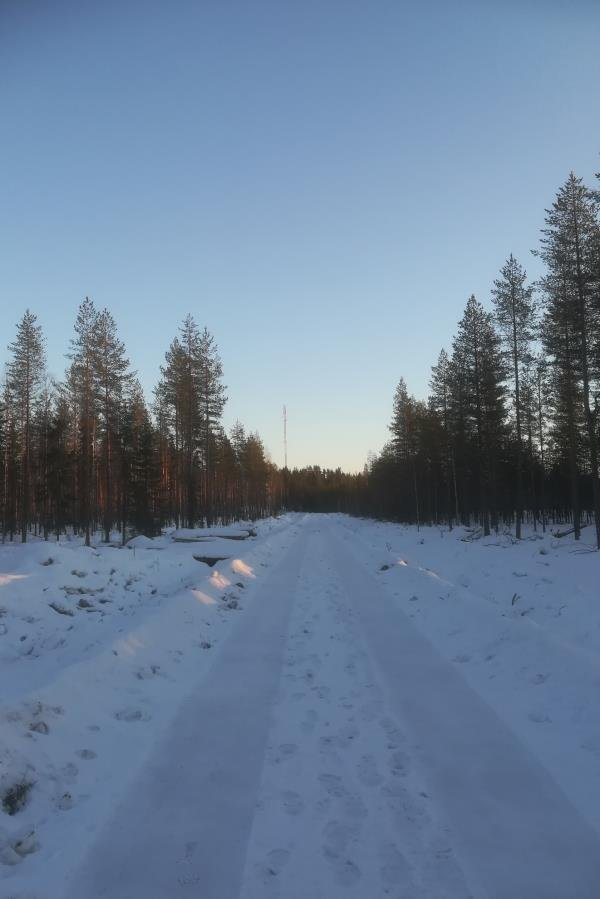 Metsätyökoneille kunnostettu tie