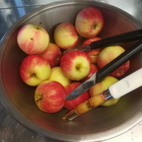 Omenat käsittelyssä