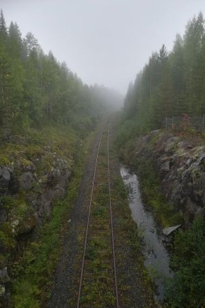 Usvaa Otanmäen kaivoksen vanhalla radalla